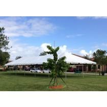 20x60 Tent Rentals